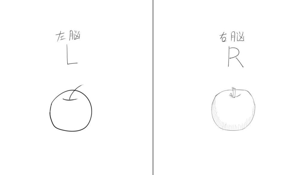 脳の右側で描くメリット