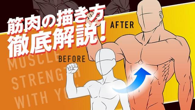 理想のカラダを描く!筋肉の描き方講座